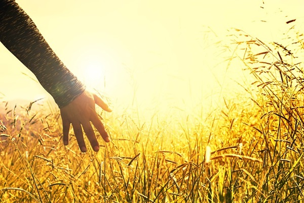 夢を持つことで人生すべてが輝く